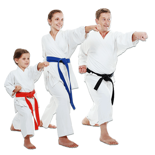 Martial Arts Lessons for Families in __CITY__ __STATE__ - Man and Daughters Family Punching Together